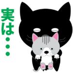 【動物好きの方】旅行中に保護しても日本に連れて帰れません